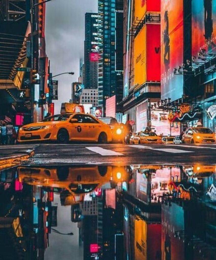 new york profile picture