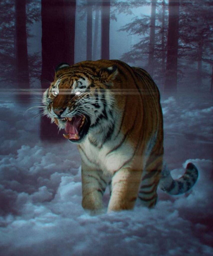 tiger profile picture for facebook