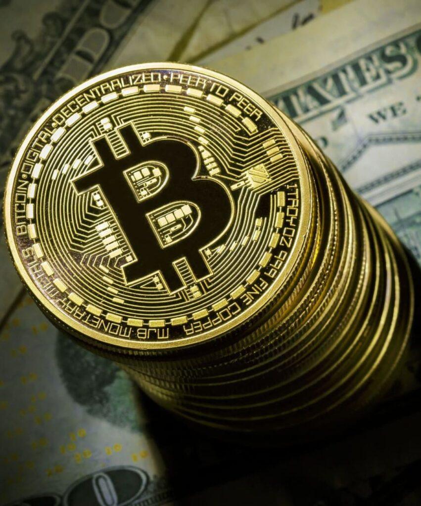 bitcoin profile pic