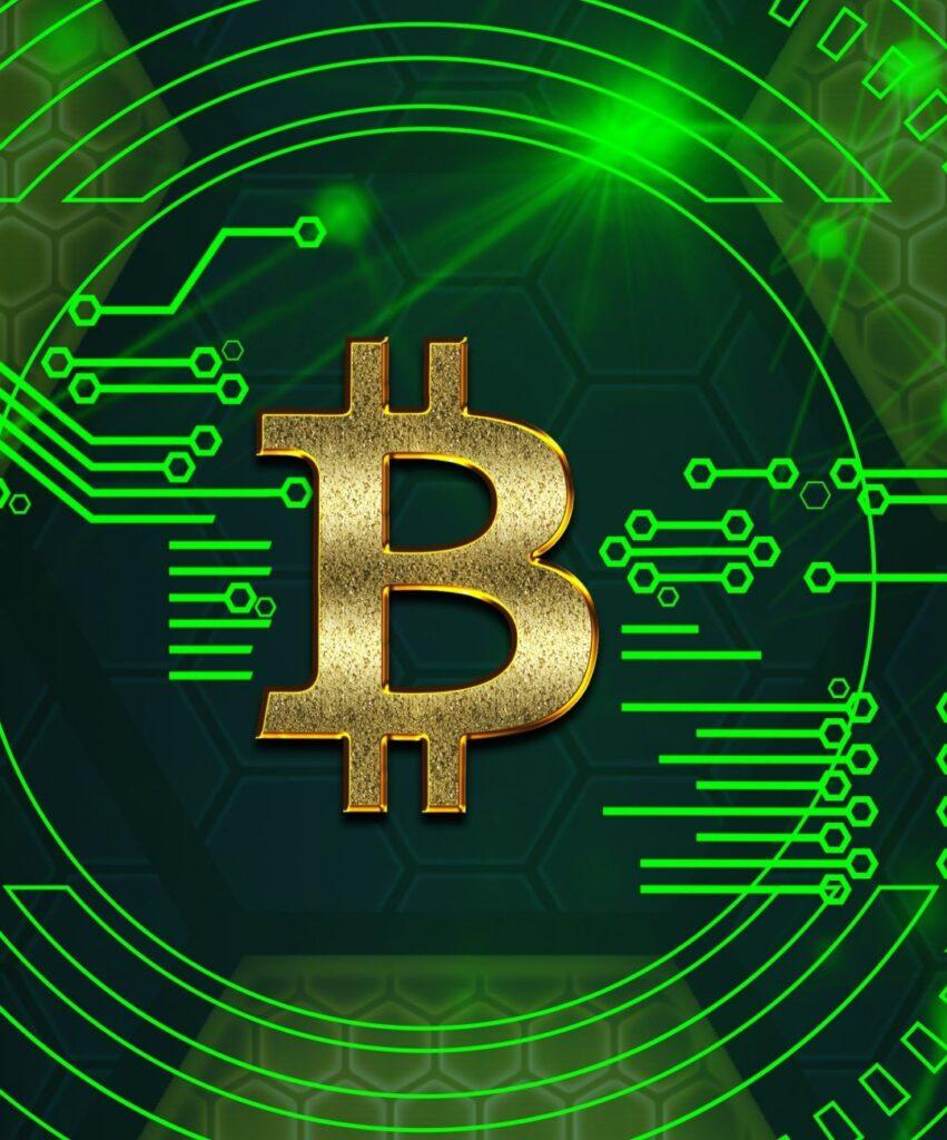 bitcoin profile image