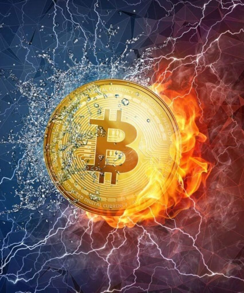 bitcoin profile photo