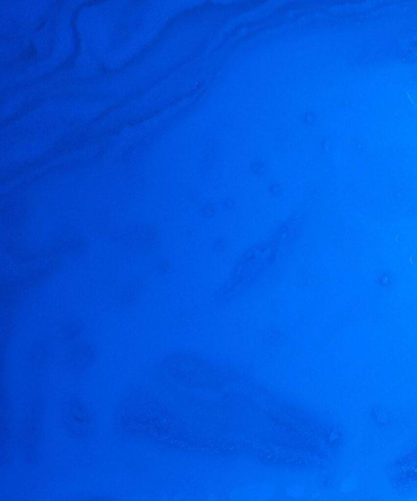 blue profile dp