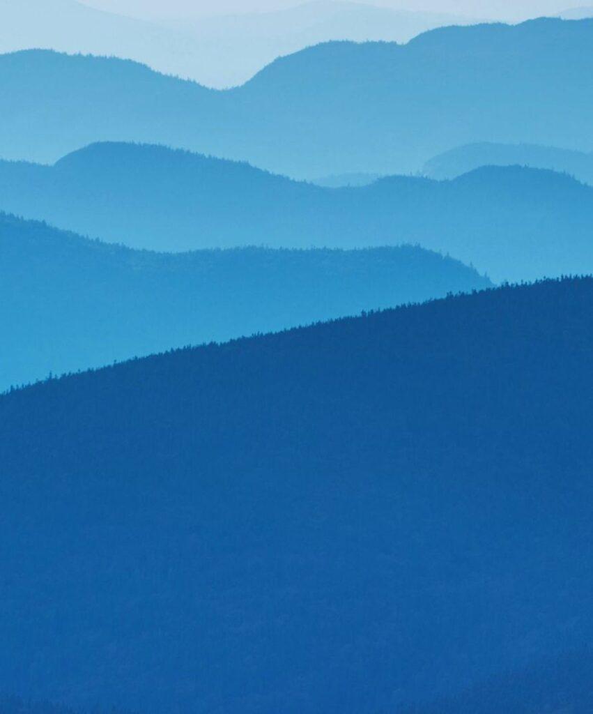blue profile picture for tiktok