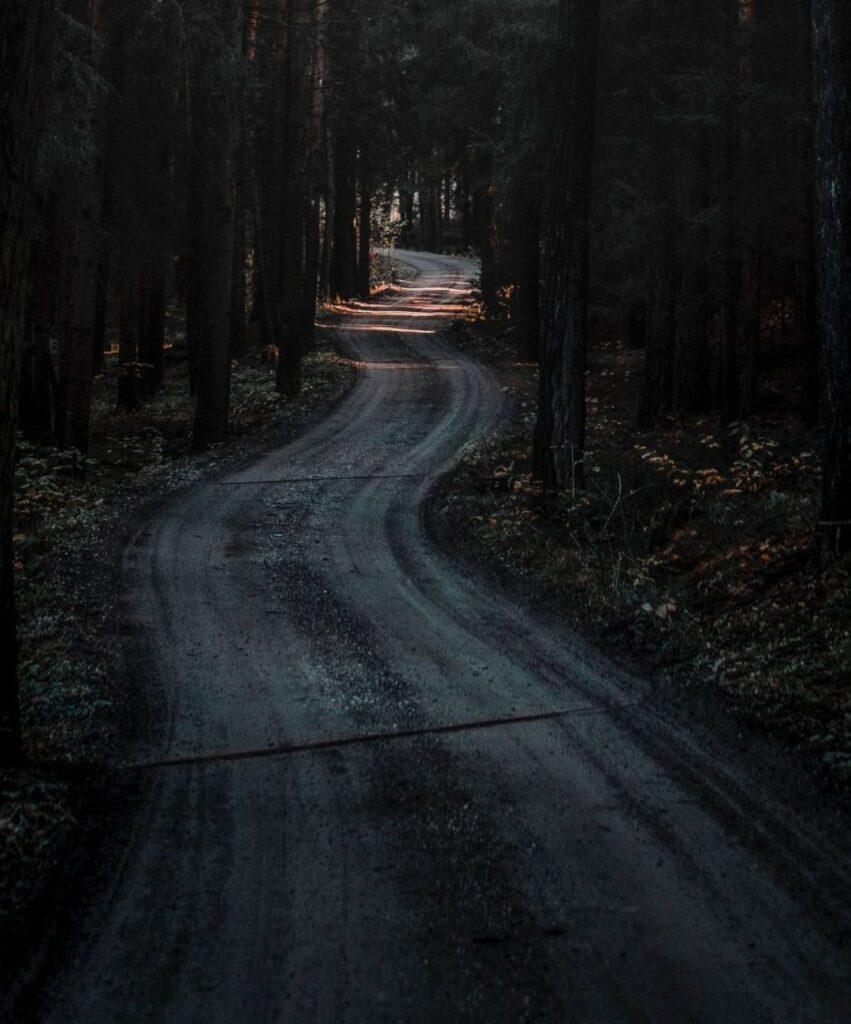 dark forest profile pic