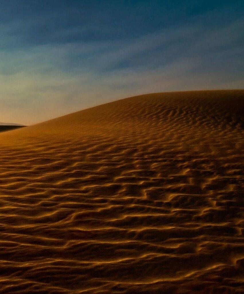 desert profile dp