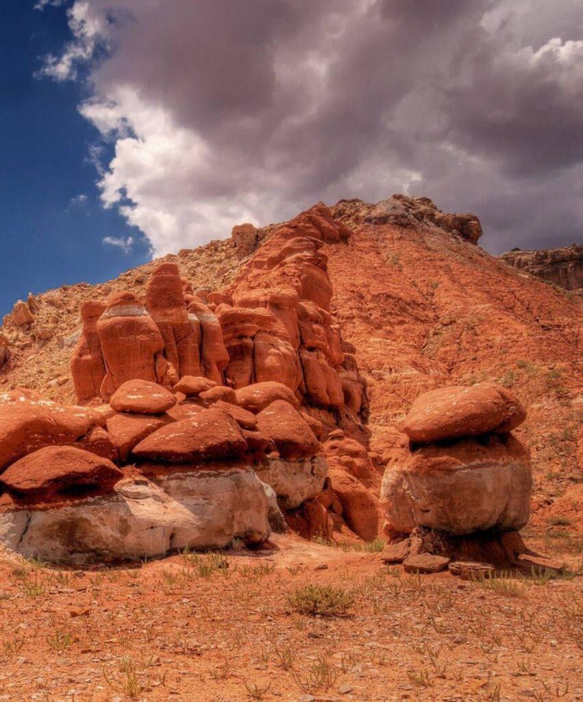 desert profile picture