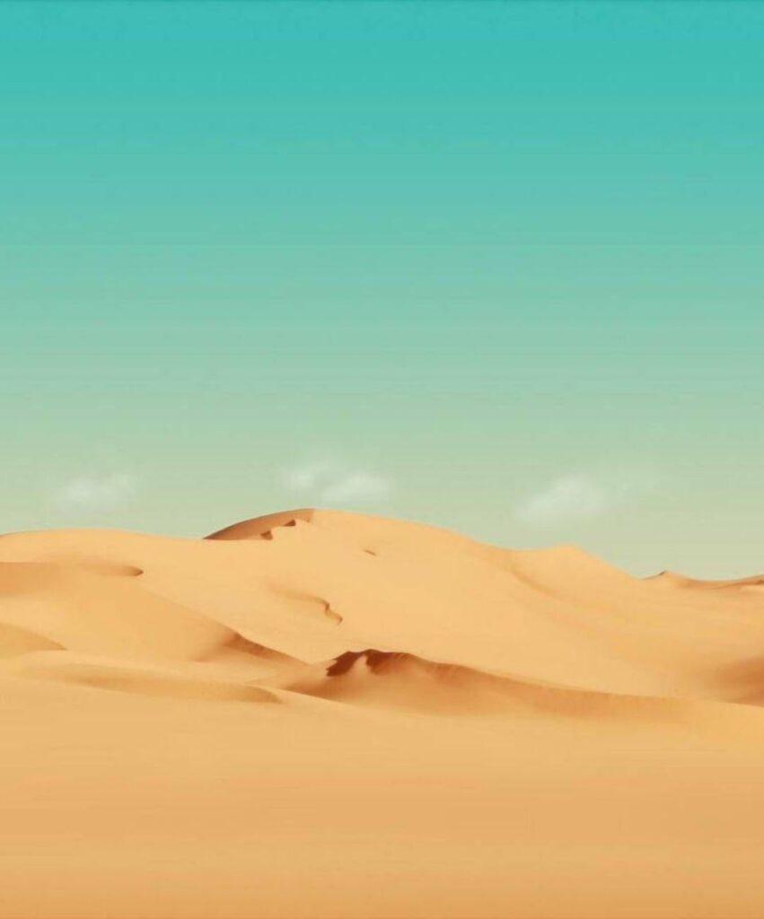 desert profile picture for discord