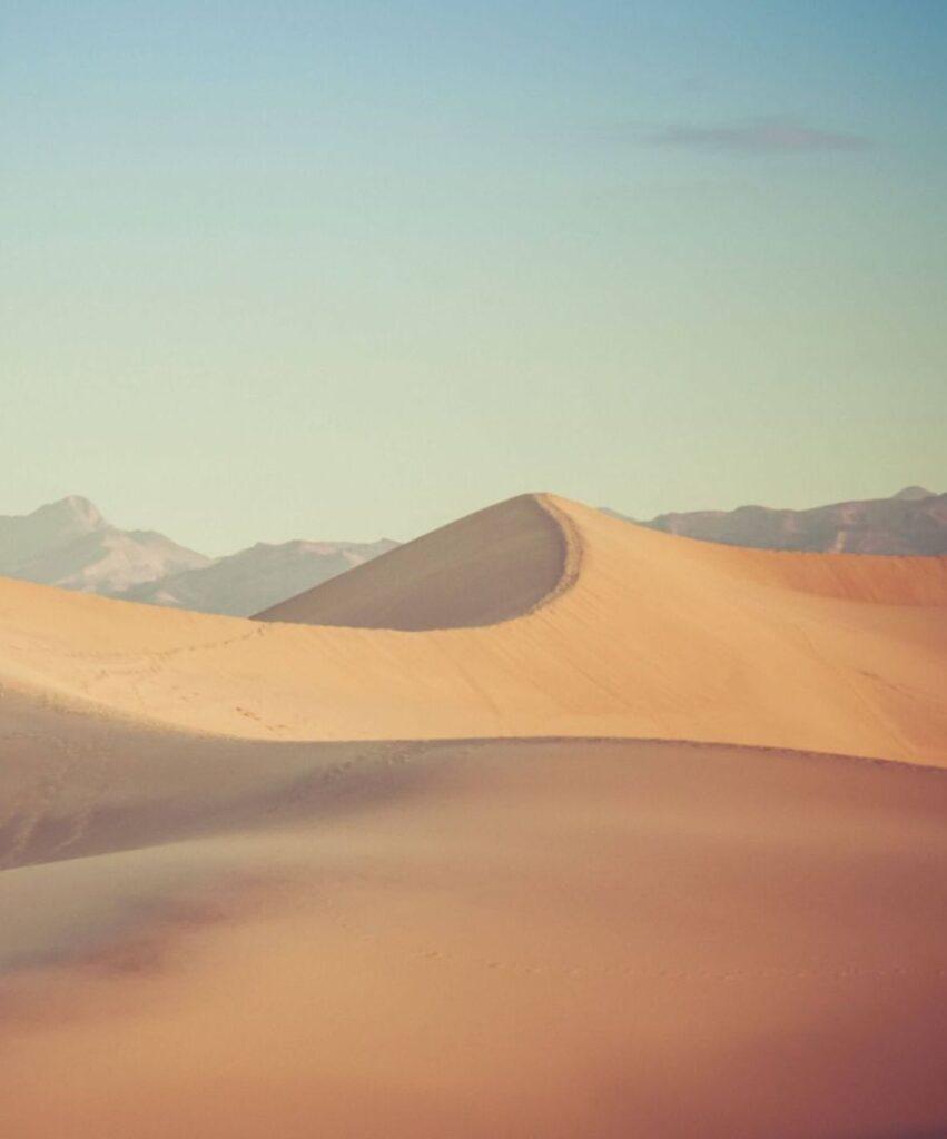 desert profile picture for tiktok